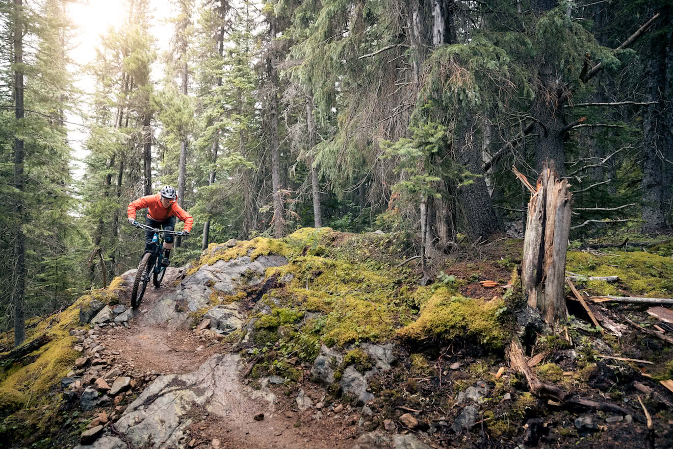 A mountain biker riding down a trail