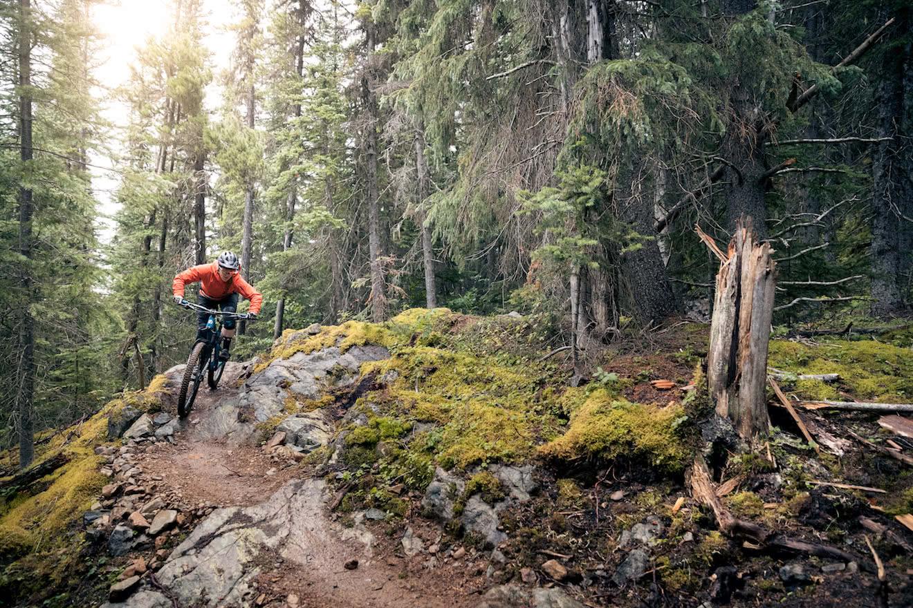 A mountain biker riding down a trail
