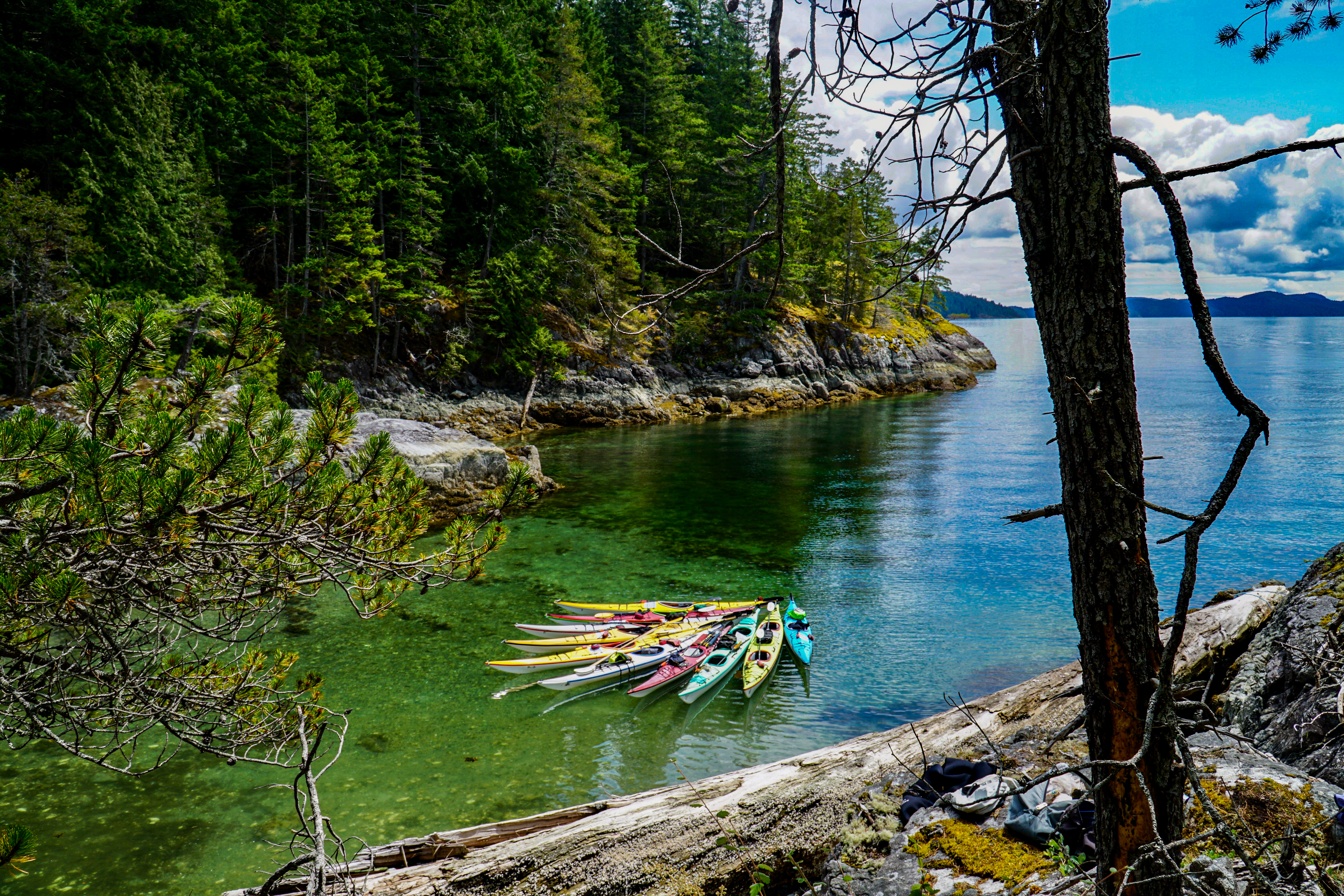 10 colourful tour kayaks rafted together and floating in a bay in Desolation Sound