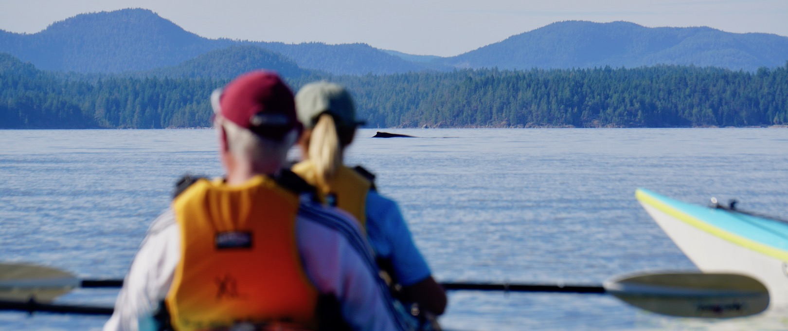 Two kayakers sitting and watching a humpback whale in the distance in Desolation Sound